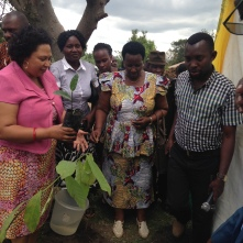 Matérialisation du lancement du programme par la plantation d'un arbre