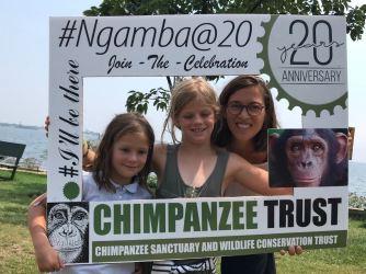 Chimps01